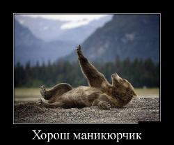 Подборка лучших демотиваторов №263