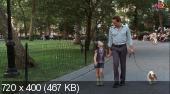 Нью-йоркская серенада / New York City Serenade (2007) HDTVRip | P