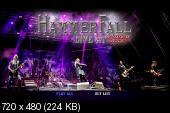HammerFall - Built To Last (Bonus DVD) (2016) (DVD5) + DVDRip