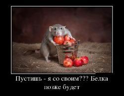 Подборка лучших демотиваторов №275