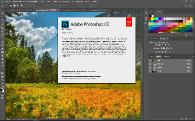 Adobe Photoshop CC 2017.0.0 2016.10.12.r.53 RePack by alexagf